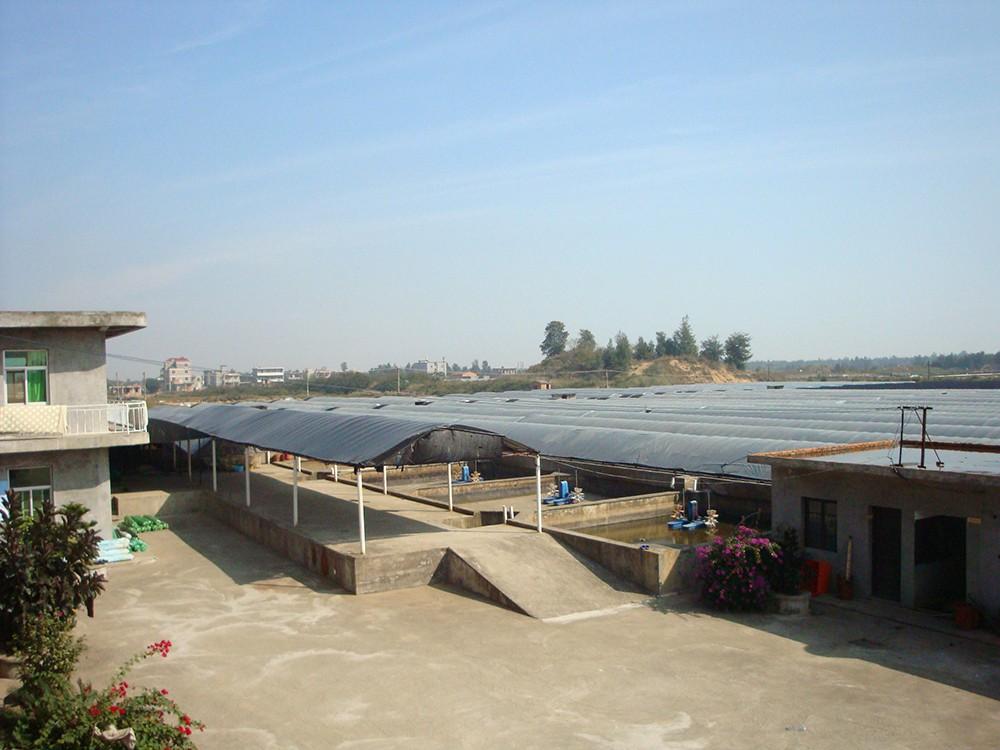 示范区养殖基地